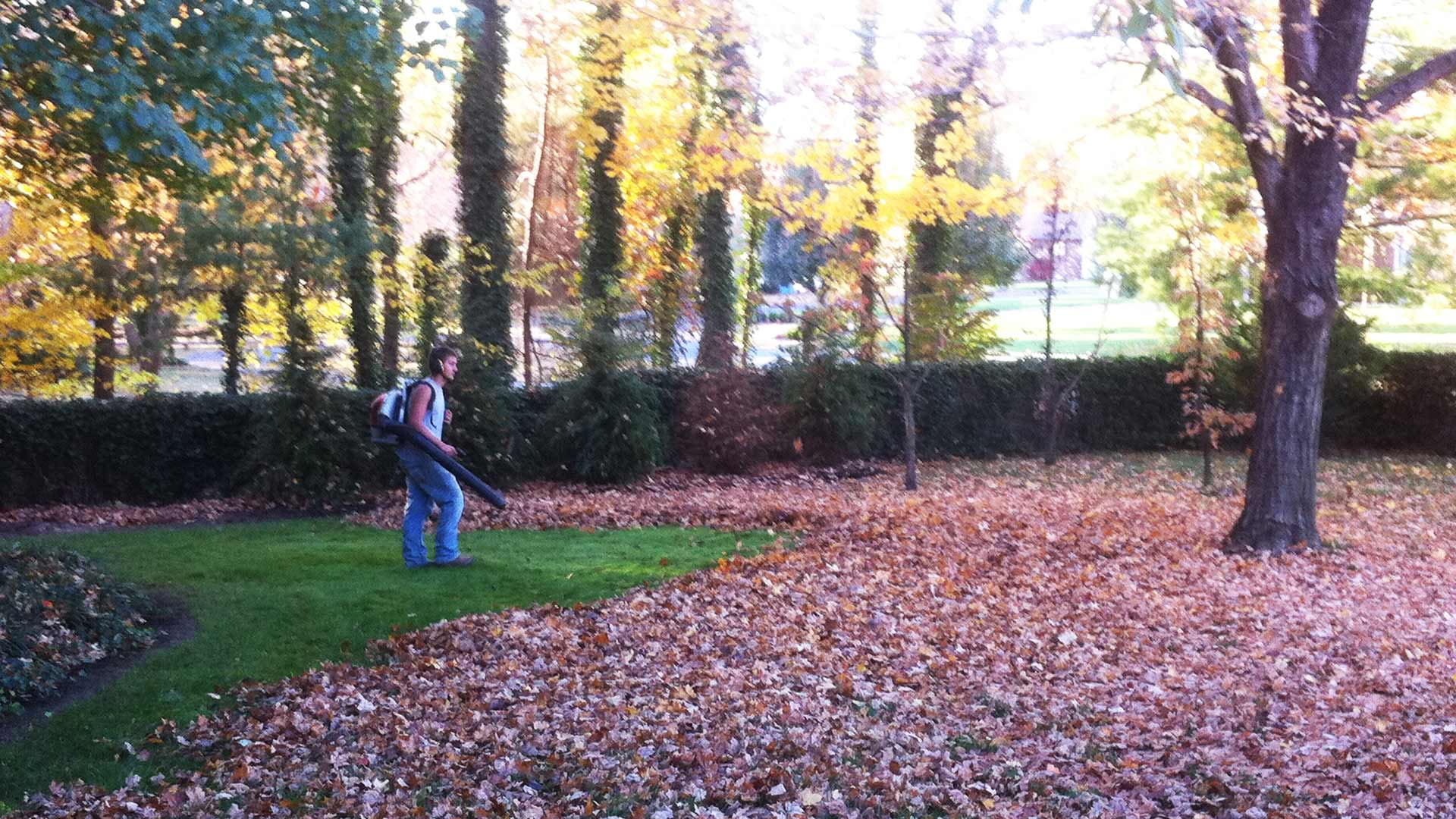 Team member blowing leaves from a customer's property.