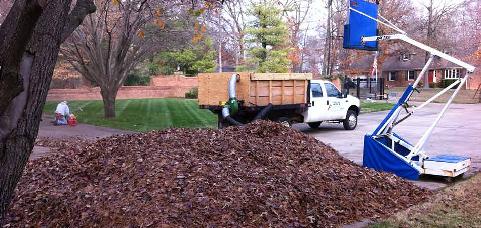 We are removing leaves with our vacuum truck for a customer in Mayfield.