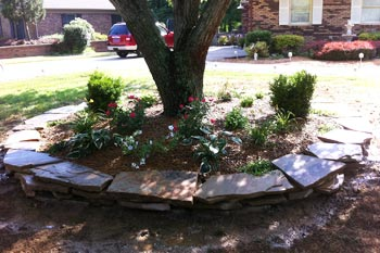 New landscaping installed in the front yard of a home in Murray.