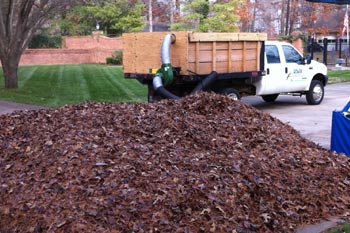 A large pile of leaves in the lawn of a home in Murray, KY.